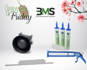 GREEN FRIDAY APRILE 2021